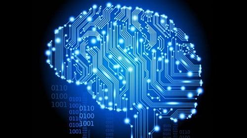 Seis Apps de Android para aprender sobre Neurociencias