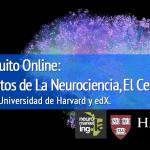 Curso Online, fundamentos de Neuromarketing por Universidad de Harvard Septiembre 2015
