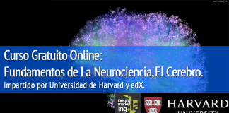 Curso Online, fundamentos de Neuromarketing por Universidad de Harvard Septiembre 2015