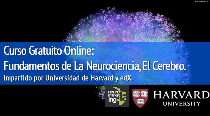 """Curso Gratuito Online """"Fundamentos de la Neurociencia: el Cerebro"""" impartido por Universidad de Harvard, 30 de septiembre 2015"""
