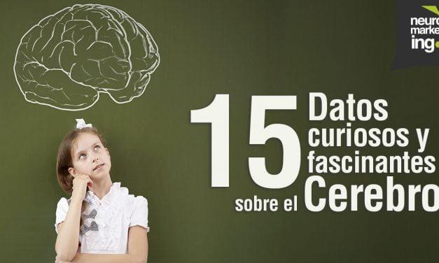 15 curiosos y fascinantes datos acerca del cerebro