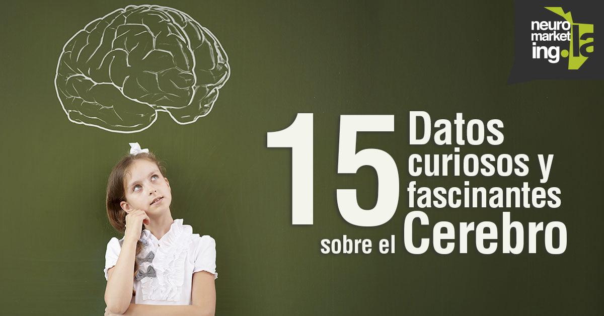 15 curiosos y fascinantes datos acerca del cerebro humano