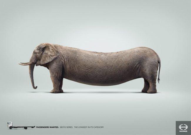 4-hino-trucks-elephant
