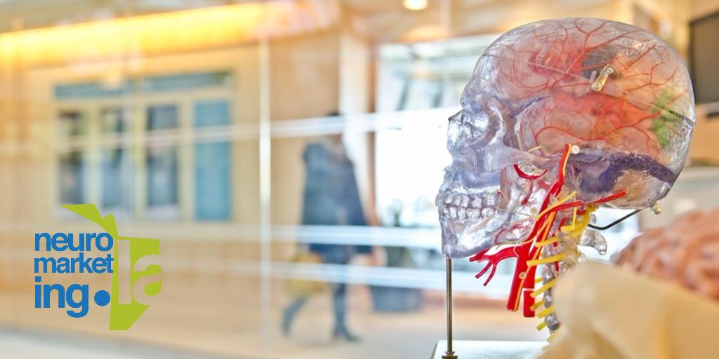 ¿Por qué ahora todo es Neuro?