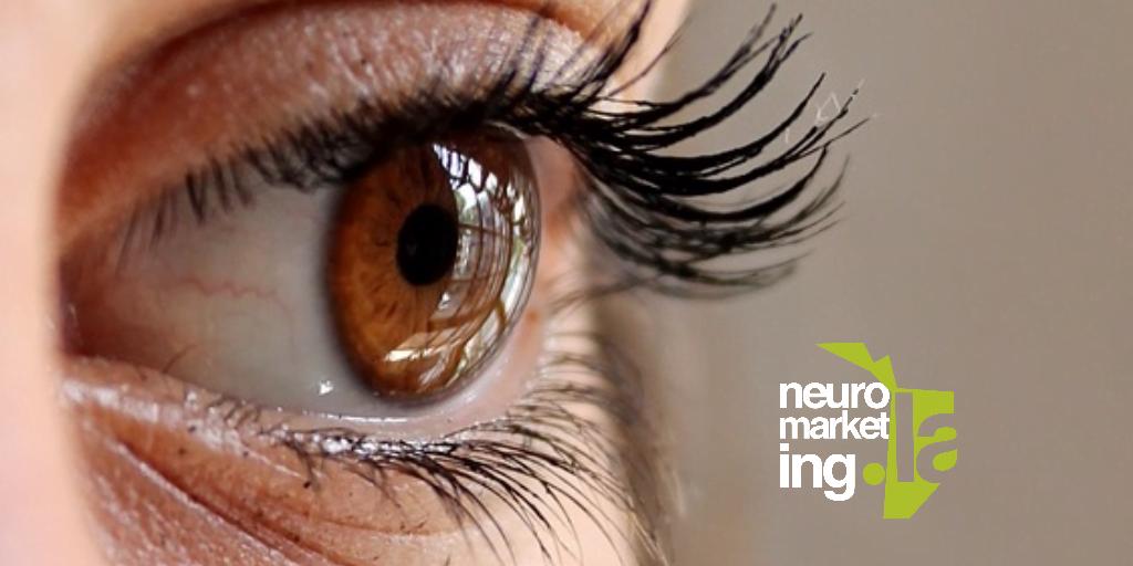 Eye Tracking: Movimiento de las pupilas predice la toma de decisiones