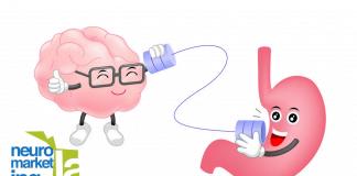 Neuronas del estómago